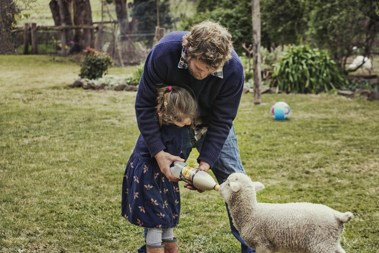 "Strategie pro kvalitu – koncept ""Sheep To Shop"" 30"