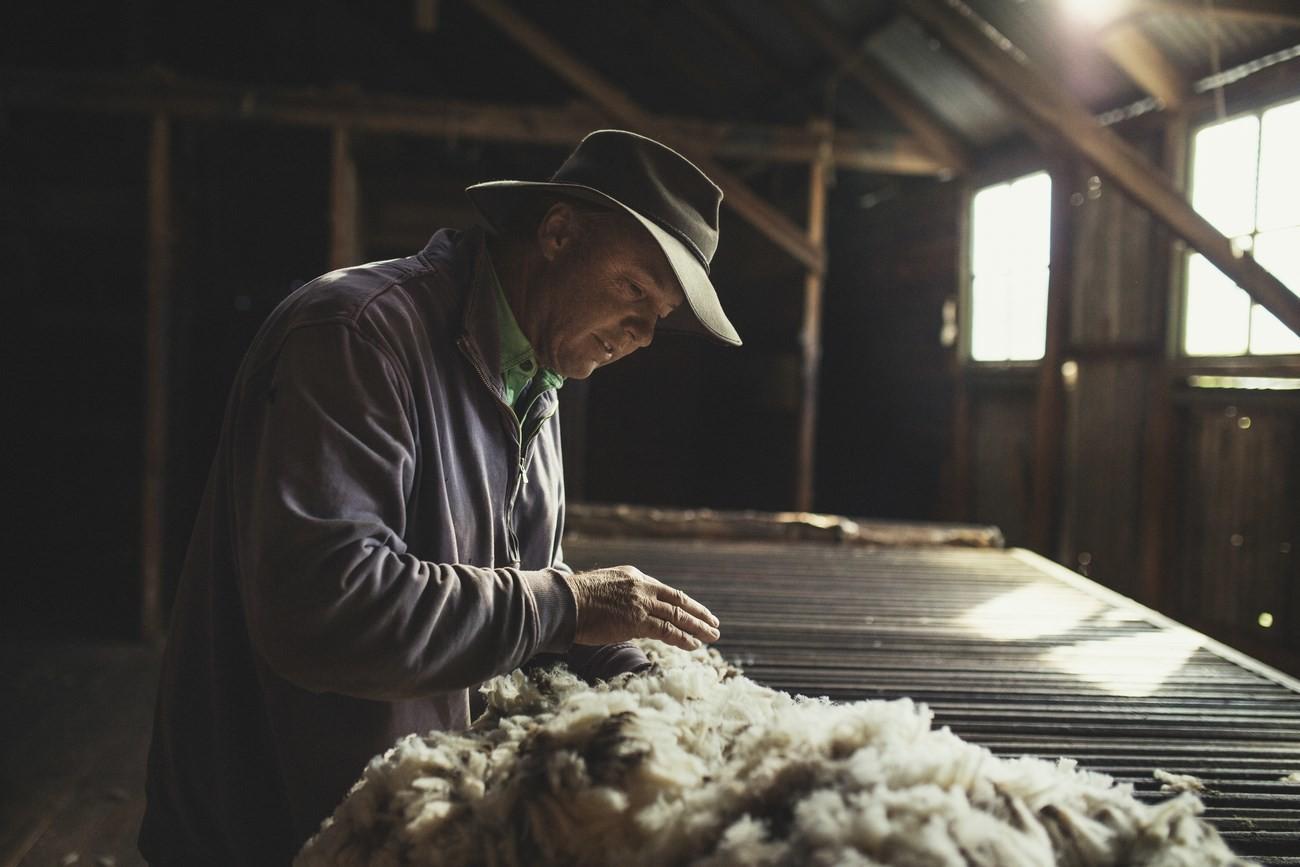 "Strategie pro kvalitu – koncept ""Sheep To Shop"" 21"