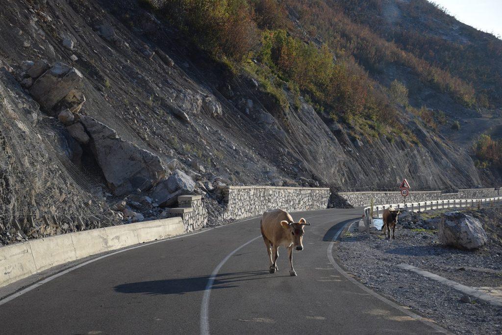 S Devoldem v Albánii 4