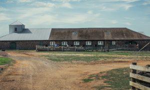 Naše farmy 9